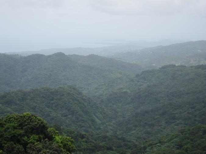 View from Yokahu