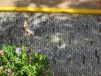 Stray dog wandering the cobblestones