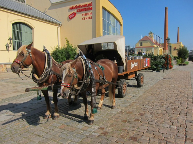 Pilsner Urquell delivery into town