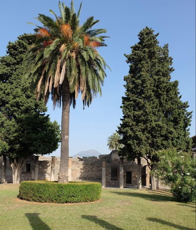 House of Faun