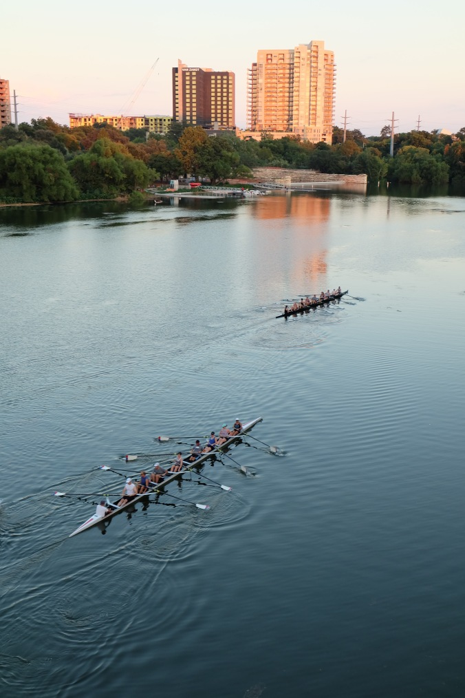 Watching rowers from the Congress Avenue Bridge